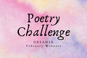 February Poetry Challenge Winners
